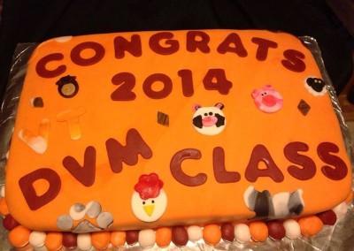 DVM Class cake
