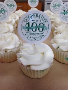 Extension Centennial Cupcakes